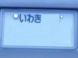 P4280272_4